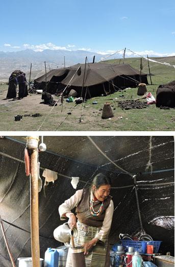 drokpa-encampment