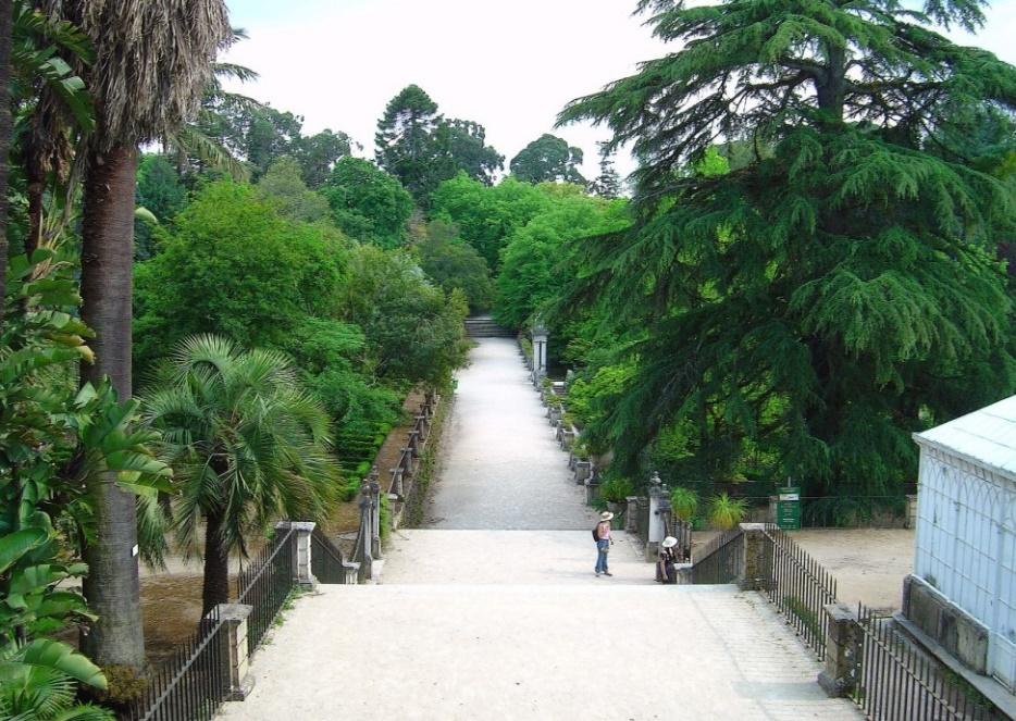 botanical-garden-of-coimbra
