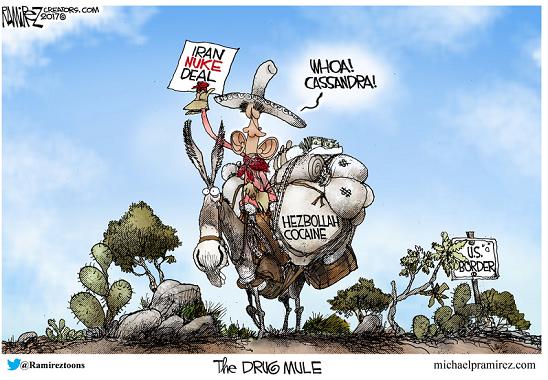 the-drug-mule
