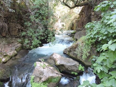 banias-springs