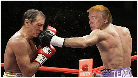 trumps-knock-out-punch