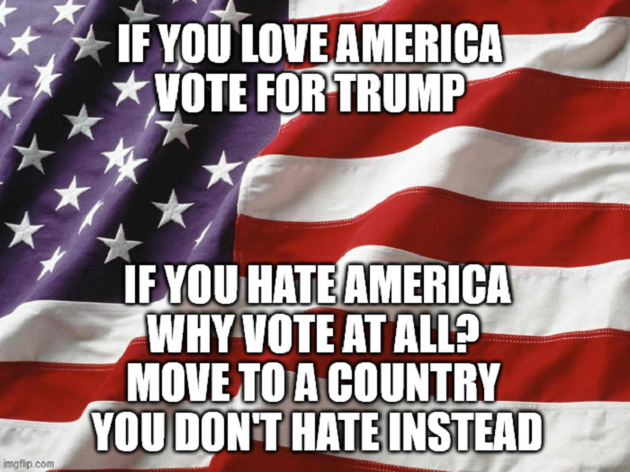 why-vote