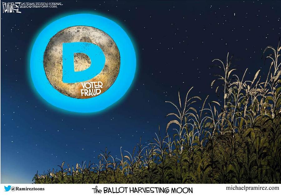 ballot-harvesting-moon